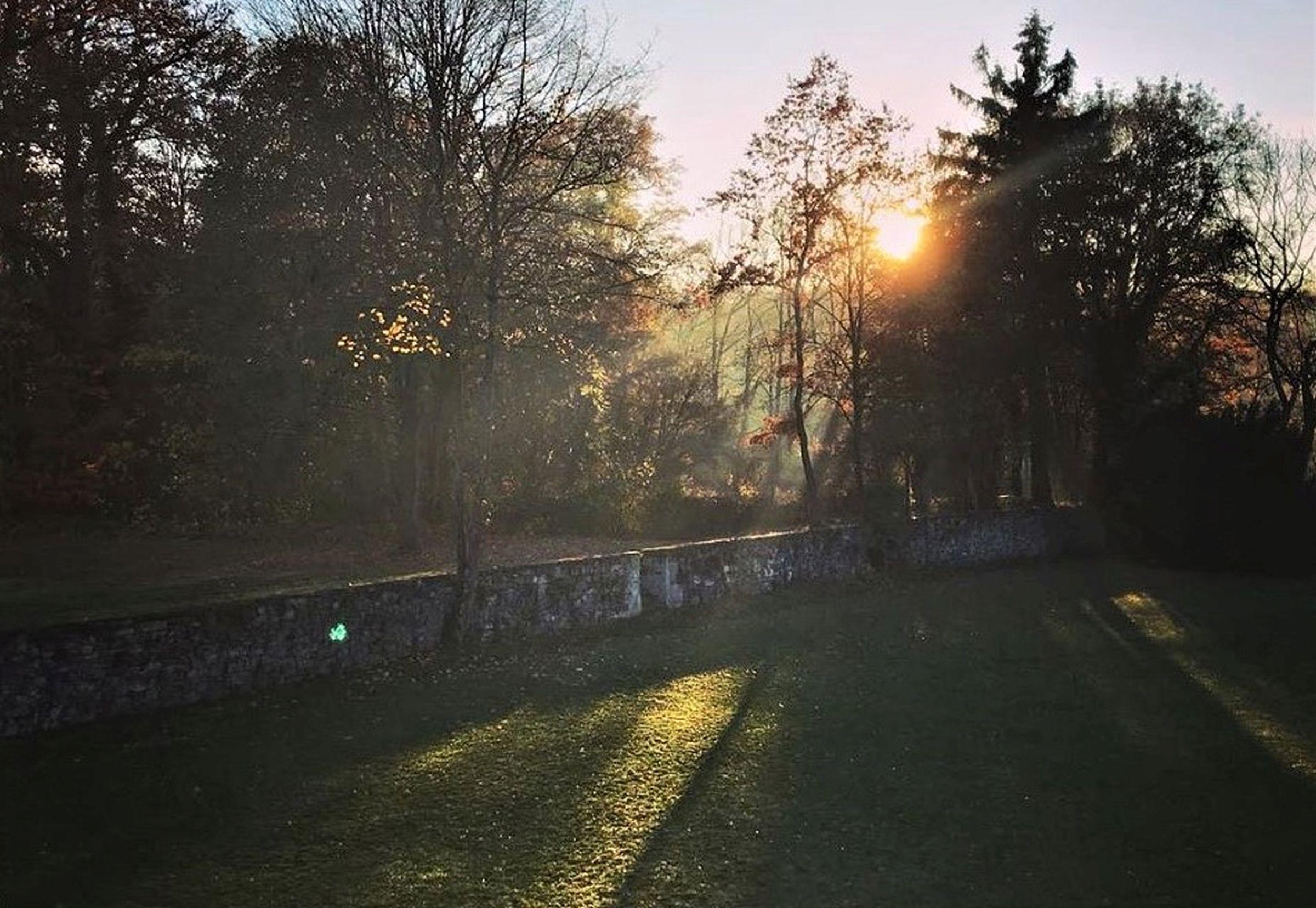 Ferienhaus Gutshof Gästehaus (Frielendorf). Historisches Schäferhaus, 70qm, Terrasse, 1 Schlafzimmer, (2546851), Frielendorf, Nordhessen, Hessen, Deutschland, Bild 3