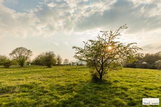 Naturschutzgebiet Dönche / Urheber: (C) Stephan Rech / Rechteinhaber: © (C) Stephan Rech