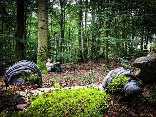 Am Baum sitzen / Urheber: Stefan Pruschwitz / Rechteinhaber: © Sehnsucht Wald - Waldbaden mit Stefan Pruschwitz