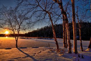 Sonnenuntergang am Waldrand im Winter / Urheber: Stefan Pruschwitz / Rechteinhaber: © Stefan Pruschwitz