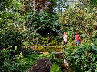 Palmengarten / Author: Florian Trykowski / Copyright holder: © Hessen Agentur