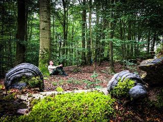 Stille im Wald finden / Urheber: Marion Hartleb / Rechteinhaber: © Sehnsucht Wald - Waldbaden mit Stefan Pruschwitz
