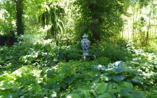 Garten mit Vase / Urheber: Haus Steffie