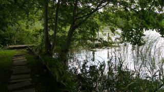 Badestelle am Buckowsee