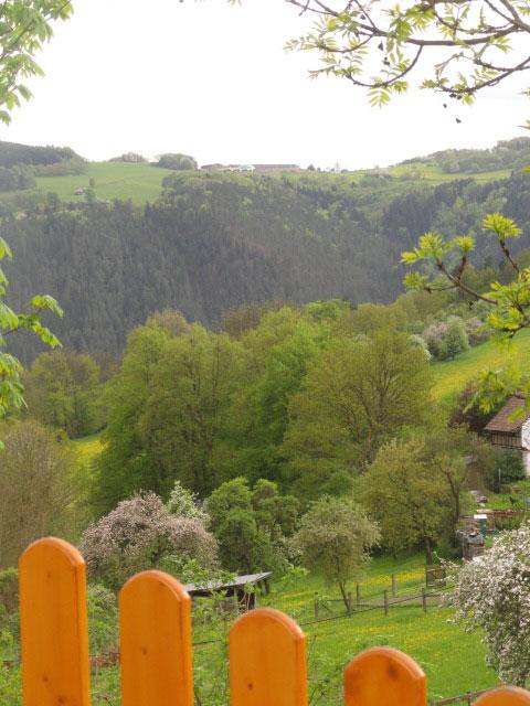 Bungalow Celny (Bad Blankenburg / OT Kleingöl Ferienhaus in Thüringen
