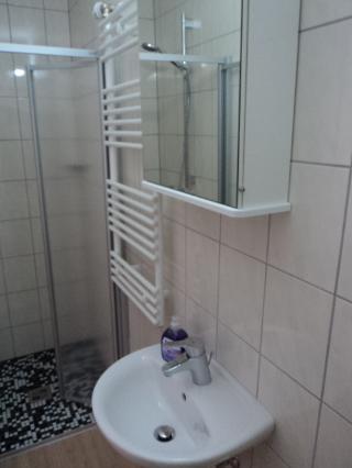 Blick ins Bad mit Waschbecken, Dusche und WC